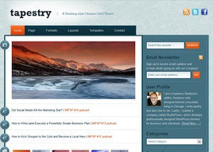 image of the tapestry theme for WordPress